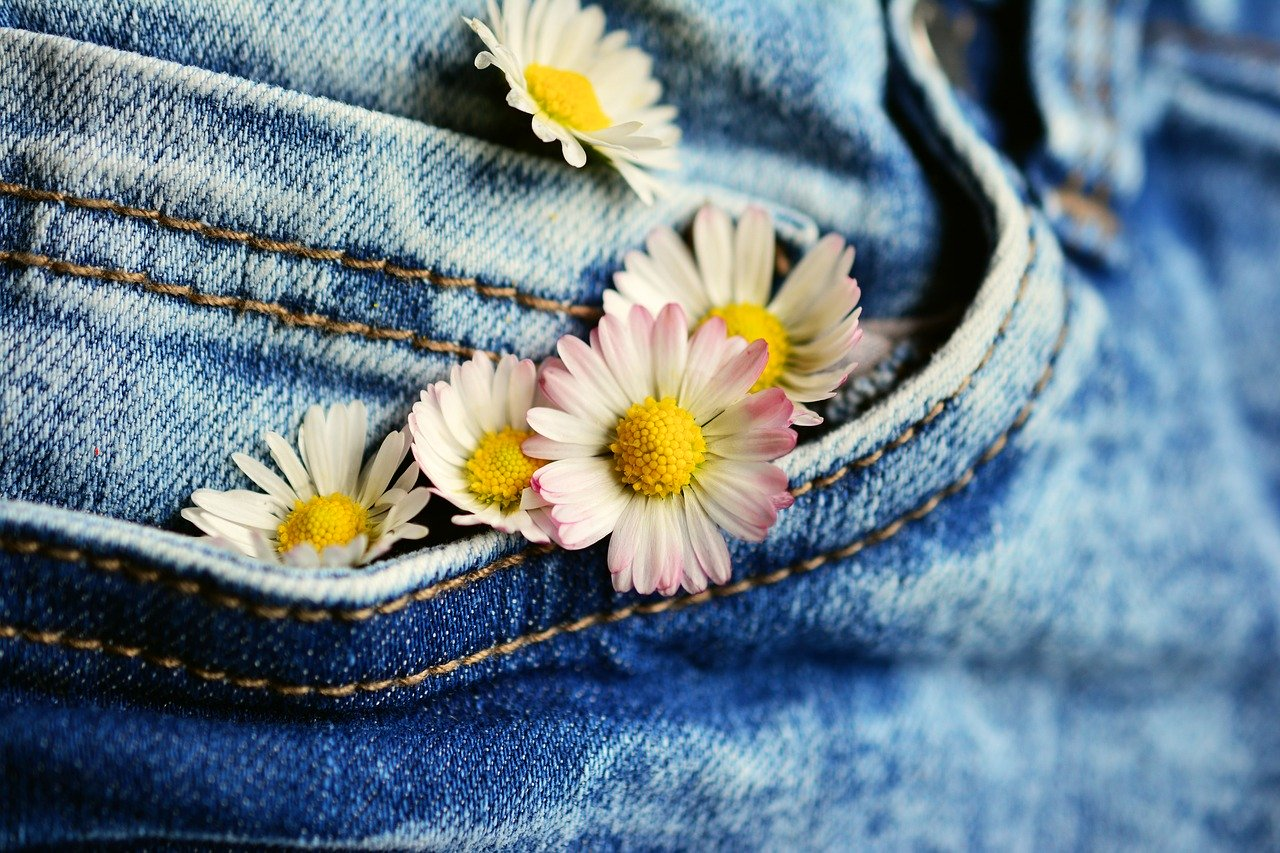 pocket, daisy, jeans